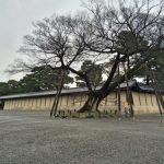 「京都御苑」広大な敷地にたくさんの植物や歴史スポットのある ゆっくりと散歩したいスポット[2016年3月 京都旅行記10]