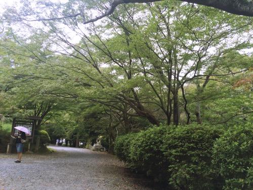 f:id:alu_nagara:20151030143447j:plain