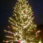 「横浜赤レンガ倉庫」のクリスマスマーケットは夜景も楽しめるホットなスポット